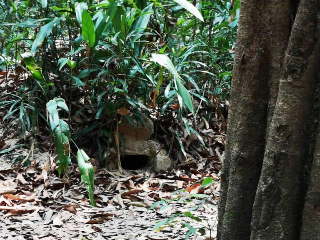 A Hidden Bunker